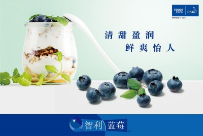 Chile promotes blueberries in China
